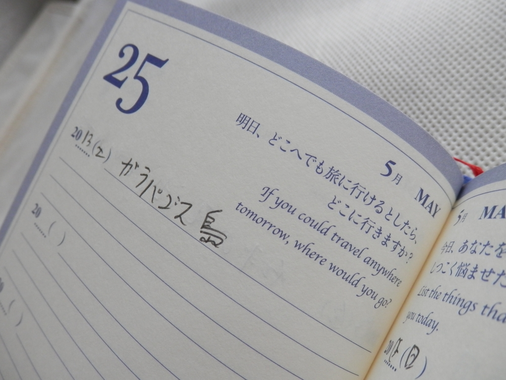 Q&A Diary : My 5 Years質問例